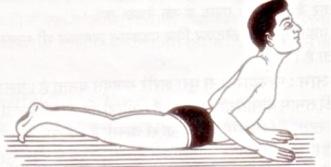 सर्पासन (Bhujang Asana or Sarp Asana)