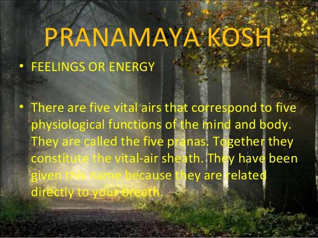 pranmay-kosh